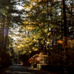 〔募集開始〕「秋・グランフォンド軽井沢」今年は10月5日・6日の二日間で開催。